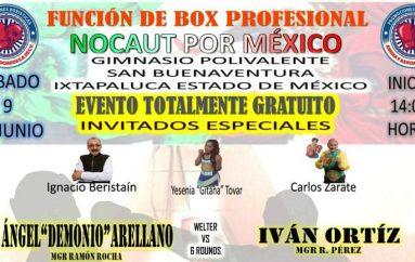 NOCAUT POR MÉXICO FUNCIÓN DE BOX PROFESIONAL