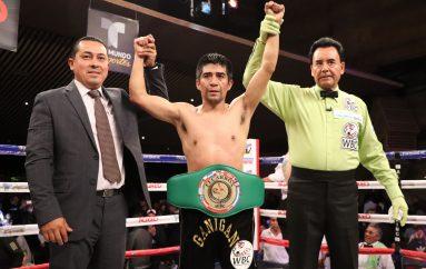 GANIGAN LÓPEZ NUEVO CAMPEÓN LATINO MOSCA WBC