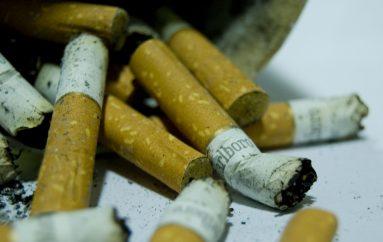 El Control del Tabaco Reforma Obvia y Justa: ONG'S